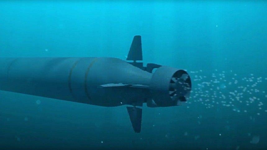 Журналисты предположили, что нафото изображен ядерный подводный беспилотник 2М39 «Посейдон».