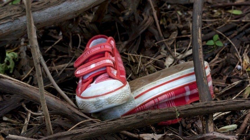 ВКемеровской области расследуется уголовное дело пофакту убийства двух десятилетних девочек. Попредварительной информации, ранее судимый мужчина заманил детей конфетами, изнасиловал иубил.