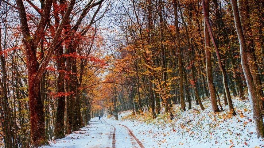 В городах РФ объявили оранжевый уровень погодной опасности из-за холода