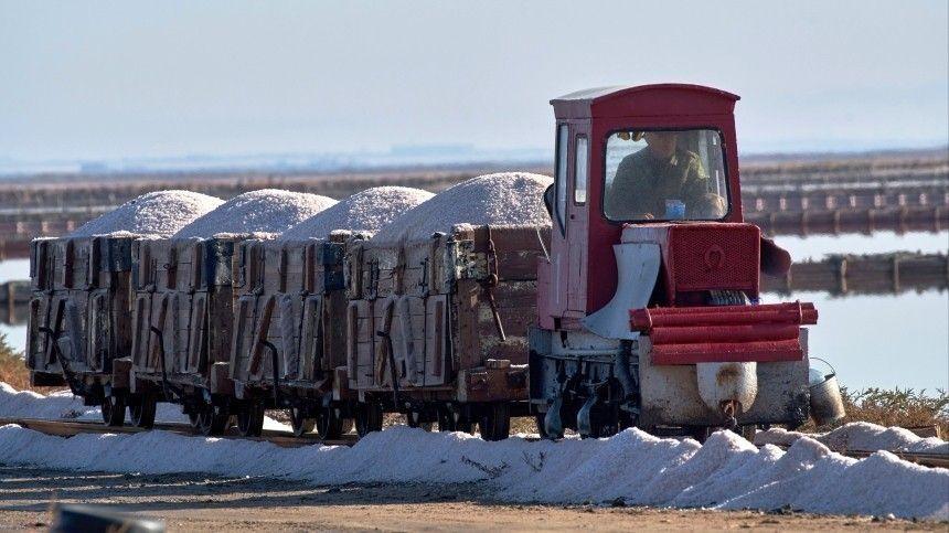 Компания занимает до16% российского рынка попоставкам соли.