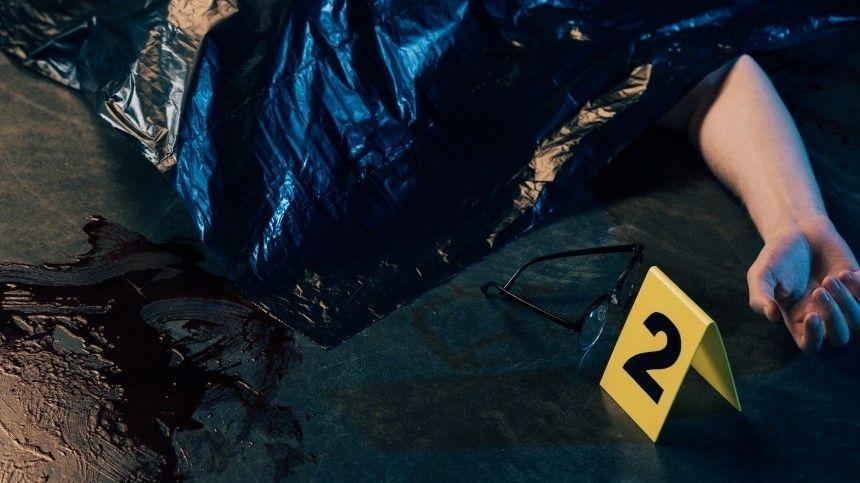 Попредварительным данным, погибшие были обнаружены вдоме наБольшой Черкизовской улице. Одного изних упаковали вмешок. Тело второго было прикрыто матрасом.