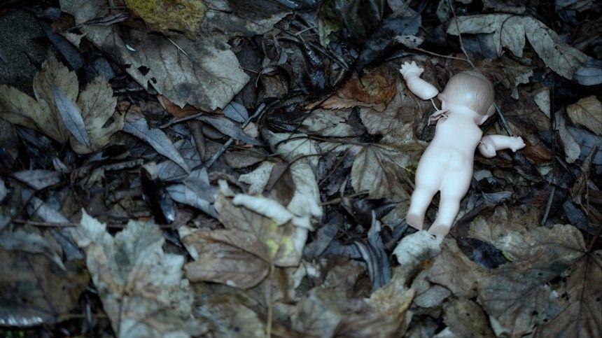 Предварительно, малышку убили изакопали.