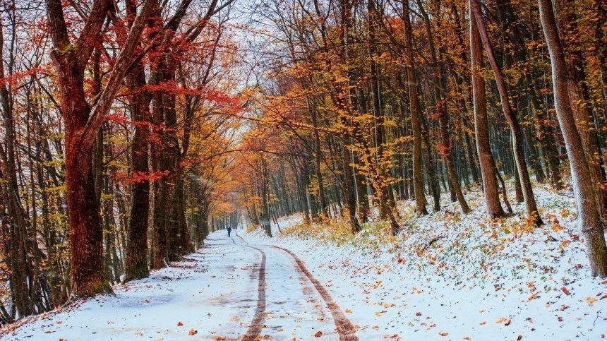 Сентябрьские снегопады спровоцировали массовые аварии в регионах РФ
