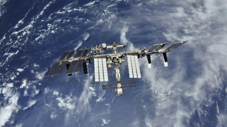 На МКС впервые удалось вырастить перец чили