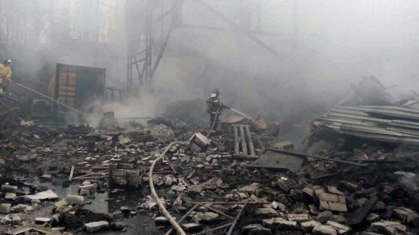 Поданным экстренных служб, причиной взрыва ипоследующего возгорания стало несоблюдение технического регламента, ведется расследование.